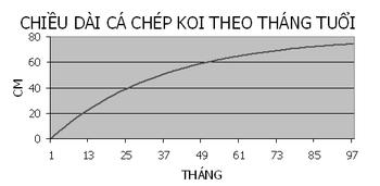 Biểu đồ chiều dài của cá theo tháng tuổi của cá Koi Nhật Bản