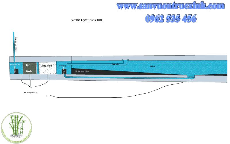 Mô tả cơ bản về hệ thống lọc hồ cá Koi chuyên nghiệp
